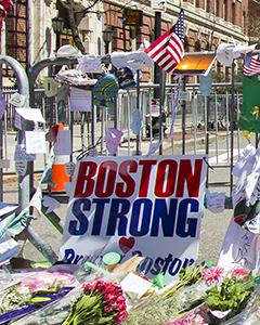 Domestic (U.S.) Terrorism